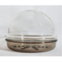 picture-Corning-PH-7-glass-terrarium-2